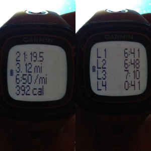 My Parkrun time and splits.